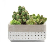 Decorate your own Mini Garden with the stylish Meraki Dish Silver Cacti Succulents Pot
