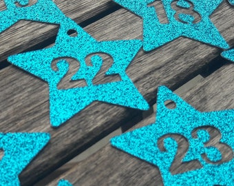 24 GLITTER ADVENT NUMBERS turquoise stars