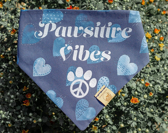Pawsitive Vibes Vinyl Add-On