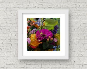 Cluster of Flowers Gerbia Daisy Square Digital Fine Art Print