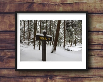 Pennsylvania Winter Hiking Trail Fine Art Photograph