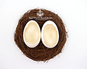 Easter Newborn twins digital eggs backdrop/background. Digital nest with eggs. Baby boy or girl Photography. Instant download JPEG files