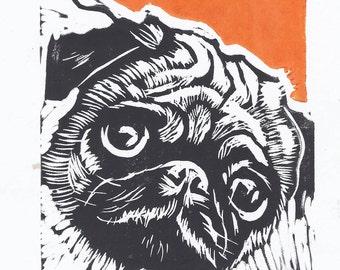Pug Orange