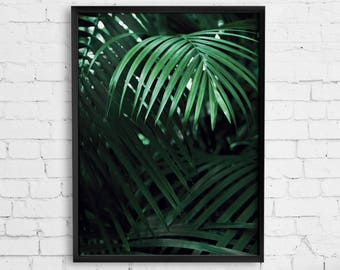 Palm Leaves Poster, Botanical Wall Print, Palm Leaves Wall Art, Botanical Wall Art, Green Leaf Decor, Tropical Print, Leaves Photography