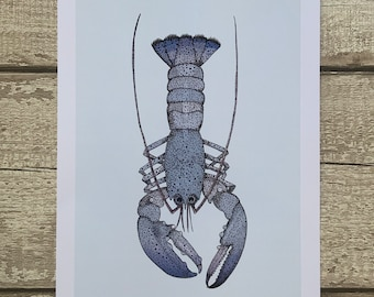 Lobster Wall Art Etsy
