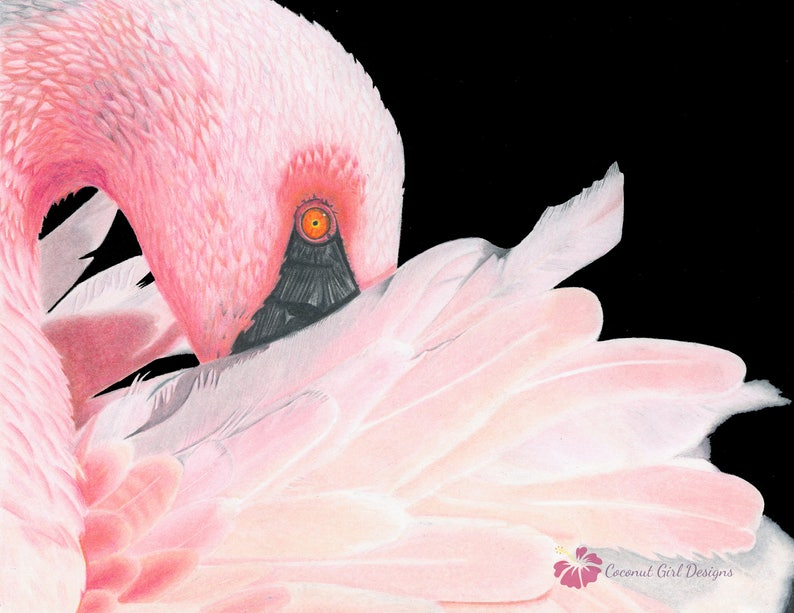 Flamant Rose Impression Dart Art Original Art Encadre Art Etsy