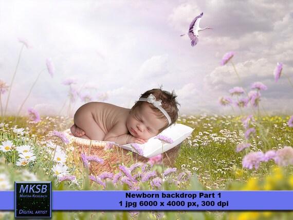 Baby Background Baby Background Backgrounds Backdrop Etsy