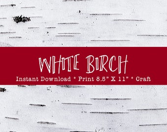 """White Birch Bark Printable For Holiday Crafts DIY Instant Download Print From Home Or Local Printer On 8.5"""" x 11"""" Paper."""