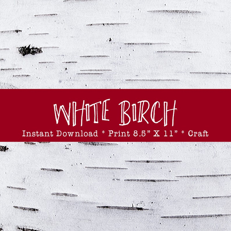White Birch Bark Printable For Holiday Crafts DIY Instant image 0