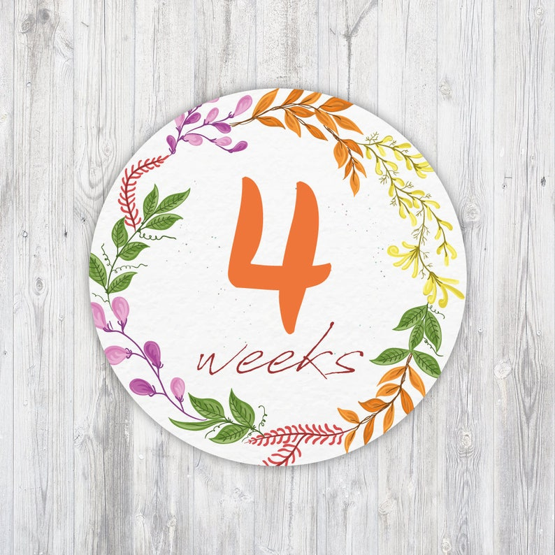 Instant Download Flowers Weekly Pregnancy Stickers Flower Printable Weekly Pregnancy Sticker Belly Bump Stickers Pregnancy Countdown
