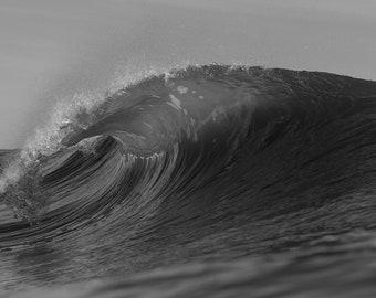 Black & White Wave #4