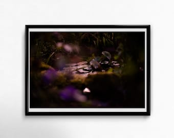 Fine Art Poster Print: I feel you, Ophelia - wall art - photograohy - dark colors - pond - garden - atmospheric - water lilies