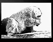 Shy Polar Bear – An Original Artwork Ink Drawing/Painting on A5, Animal Wall Art, a Unique One Off Gift - only one available ever !!
