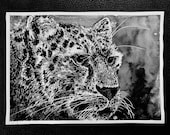 Amur Leopard – An Original Artwork Ink Drawing/Painting on A5, Animal Wall Art, a Unique One Off Gift - only one available!