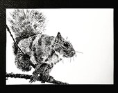 Grey Squirrel Dip Pen – An Original Artwork Ink Drawing/Painting on A5, Animal Wall Art, a Truly Unique One Off Gift - only one available!