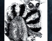Ring Tailed Lemur – An Original Artwork Ink Drawing/Painting on A5, Animal Wall Art, a Truly Unique One Off Gift - only one available!