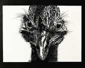 Cassowary – An Original Artwork Ink Drawing/Painting on A5, Animal Wall Art, a Truly Unique One Off Gift - only one available!