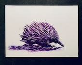 Echidna – An Original Artwork Ink Drawing/Painting on A5, Animal Wall Art, a Truly Unique One Off Gift - only one available!