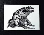 Poison Dart Frog – An Original Artwork Ink Drawing/Painting on A5, Animal Wall Art, a Truly Unique One Off Gift - only one available!