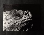 Dragon Lizard – An Original Artwork Ink Drawing/Painting on A5, Animal Wall Art, a Truly Unique One Off Gift - only one available!