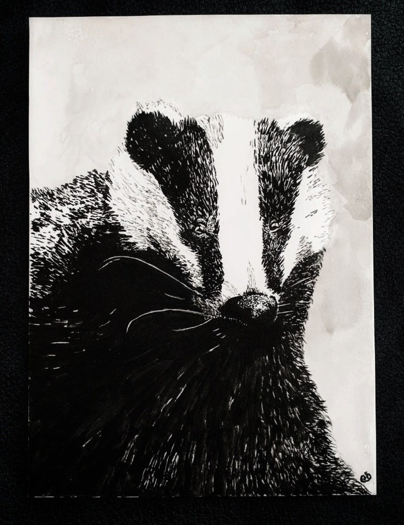 That's the Badger  An Original Artwork Ink image 0