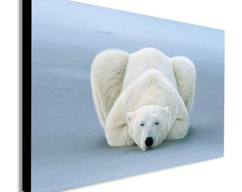 1619a557f24 Polar Bear Sleeping - Canvas Wall Art Framed Print - Various Sizes