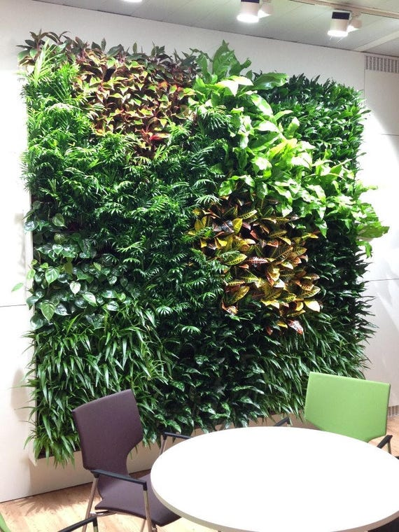 Green Wall Garden Vertical Planter Grid And Planting Tray For Etsy