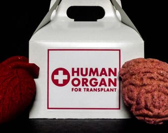 Human Organ Transplant Bath Bomb Set