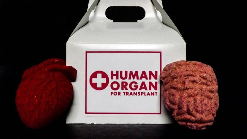 Human Organ Transplant Bath Bomb Set image 0