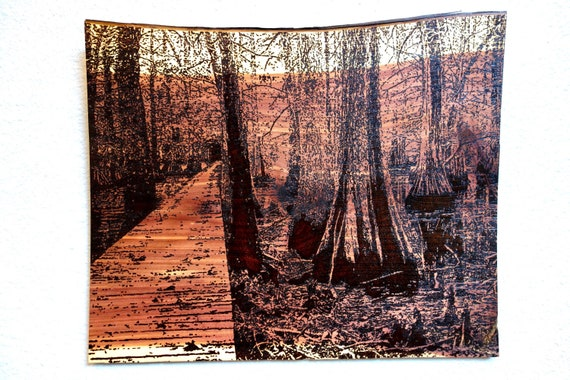 "Bridge through the Cypress Trees, pyrography on red cedar, 17.5""H x 15""L **FREE US SHIPPING*"