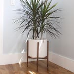 "Large Mid-Century Modern Cylinder Planter with Wood Plant Stand - 12"" Glazed Ceramic Pot"