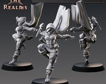 Elf Female Rogue,  Human Female Rogue, Dungeons and Dragons, Tabletop RPG, D&D, Pathfinder, 28mm miniature, 32 mm miniature