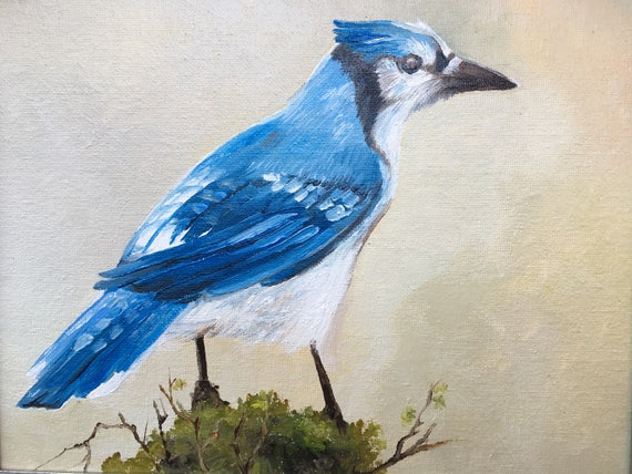 Blue Jay Original Oil Painting Bird Portrait Artwork
