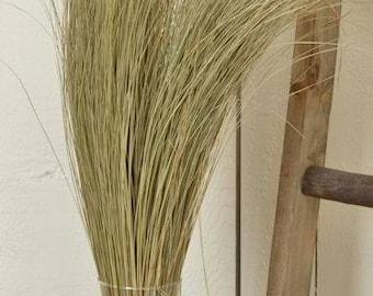 Dried Dune Grass | Dried Grasses | Natural Dried Grass | Dried Decor | Natural Decor