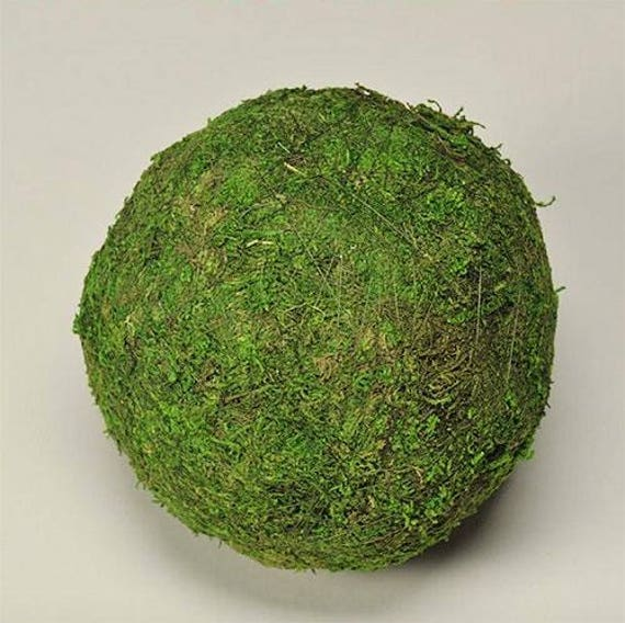Decorative Moss Balls Natural Moss Balls Decorative Balls Etsy Gorgeous Natural Decorative Balls