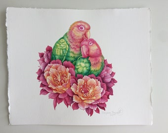 Lovebirds with cactus flowers