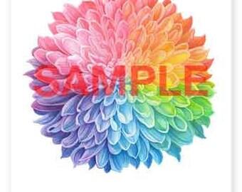 Rainbow Chrysanthemum - A4 Signed Giclee Print