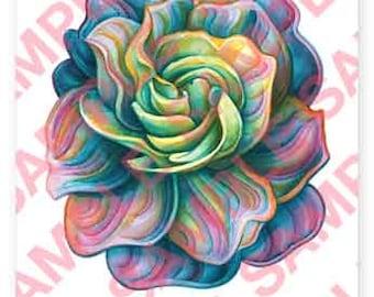Rainbow Gardenia 3