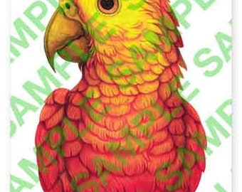 Red Amazon Parrot A4 digital PDF download