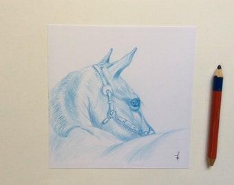 Original drawing in blue pencil, horse head