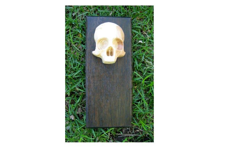 Reclaimed Wood Mahogany and Doug Fir Skull Decorative Wall image 0