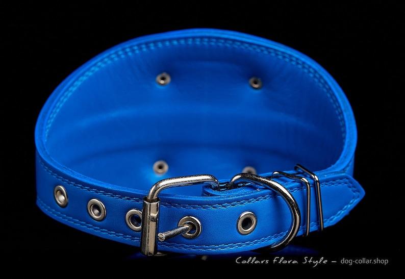 Galgo Borzoi dog Afghan Hound collar Greyhound Saluki collar Lurcher collar Azawakh collar Leather dog collar for Sighthound