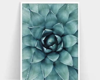Succulent Print, Cactus Print, Succulent Poster, Nature Prints, Botanical Wall Art, Cactus Poster, Succulent Wall Art, Minimalist Art