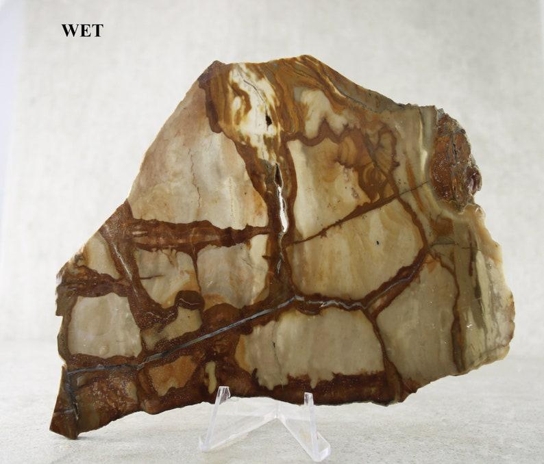 Picture Jasper Rough Slab Specimen Natural Unpolished Jasper Specimen Rock Specimen Collector Stone Lapidary Slab