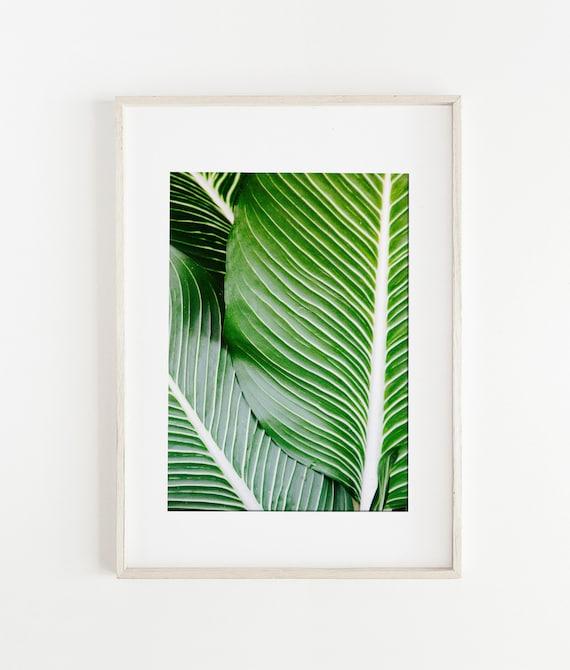 Palm Leaf Print/ Palm Wall Art/ Tropical Palm Print/ Tropical | Etsy