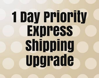 Upgrade to 1 Day Priority Express Shipping