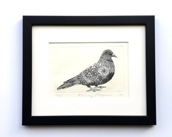 Fancy Pigeon Etching. Handmade limited edition print