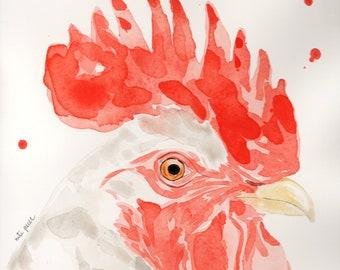 Gallo blanco, acuarela original