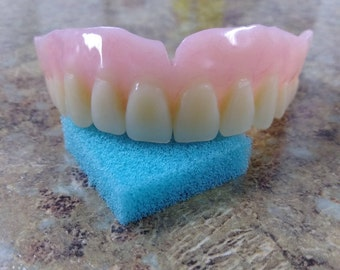 Dentures   Etsy