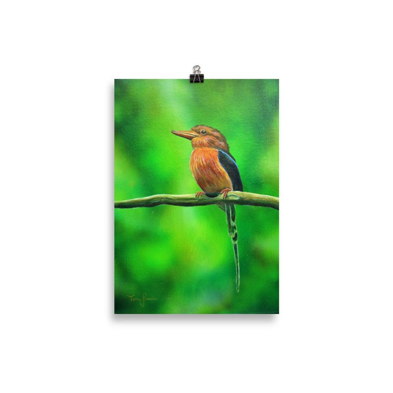 Red Bird Print  Bird Wall Art  Bird Print  Realistic Animal 30×40 cm